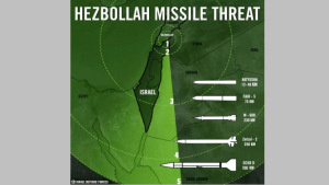 IDF_infographic_-_main