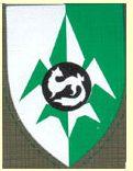 IDF:n eteläinen sotikastiedustelu logo
